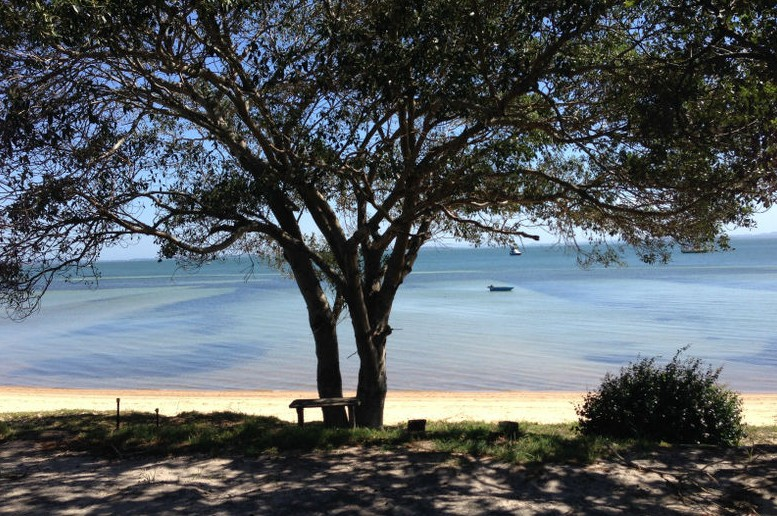 Adams Beach Camping Ground - Tourism TAS