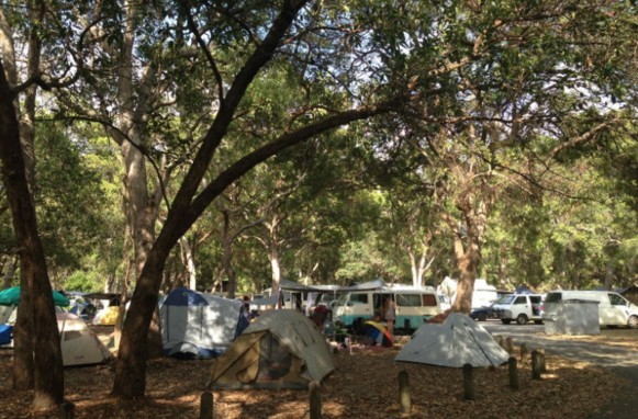 Adder Rock Camping Ground - Tourism TAS