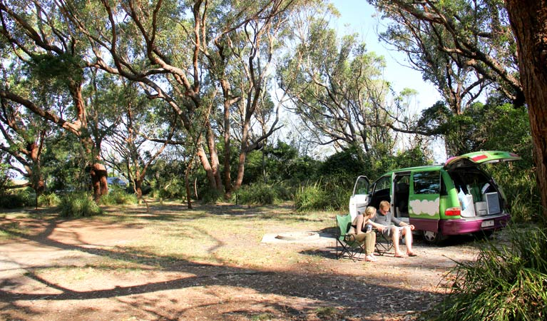 Aragunnu campground - Tourism TAS