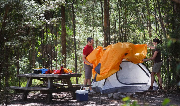 Bald Rock campground and picnic area - Tourism TAS