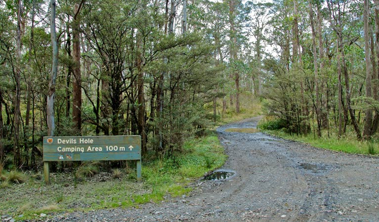 Devils Hole campground and picnic area - Tourism TAS