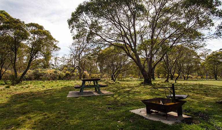 Little Murray campground - Tourism TAS