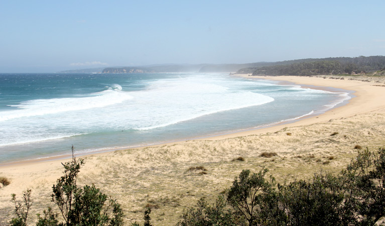 Middle Beach campground - Tourism TAS