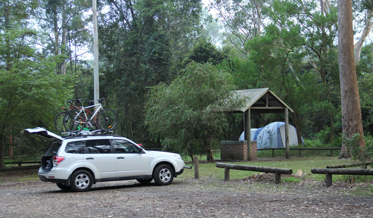 Mill Creek campground - Tourism TAS