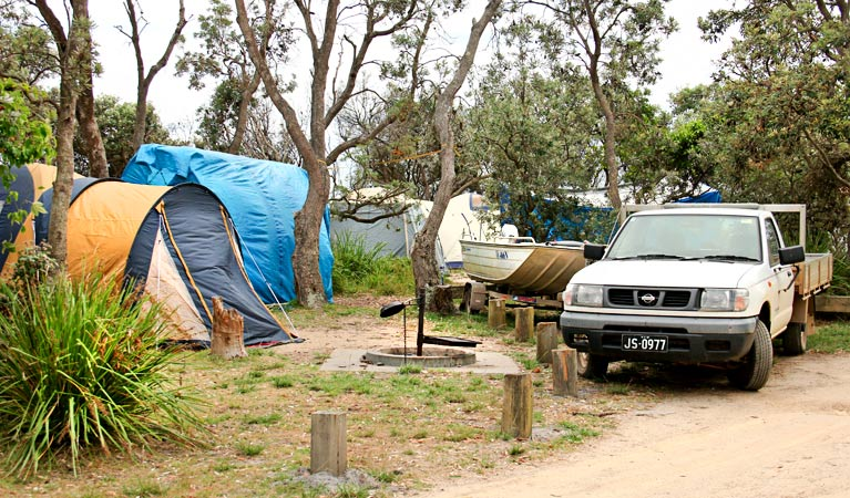Picnic Point campground - Tourism TAS