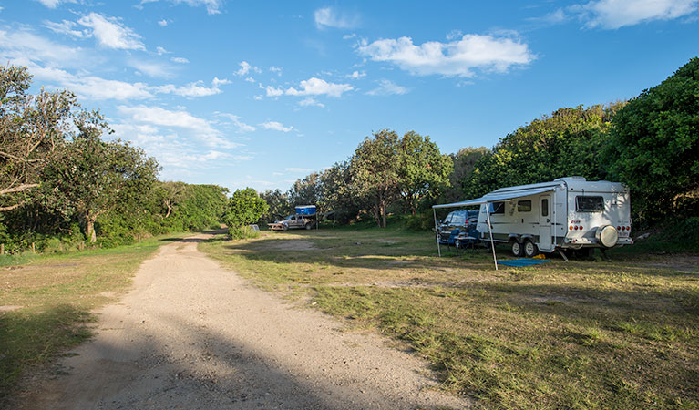 Racecourse Campground - Tourism TAS