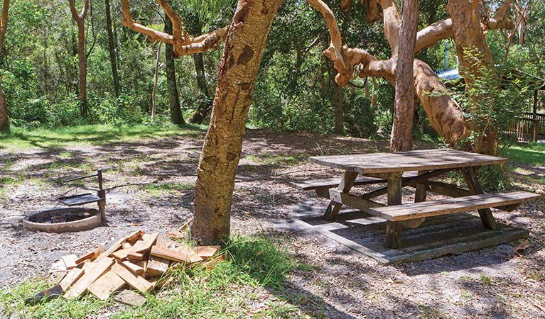 Station Creek campground - Tourism TAS