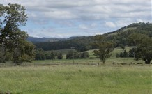 Ingleden Park Bed and Breakfast Farmstay Cottages - Tourism TAS