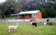 Moorallie Cottage Farm Stay - Tourism TAS