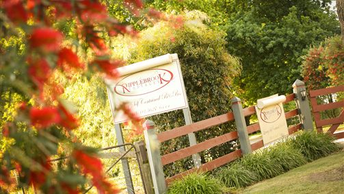 Ripplebrook Cottages - Tourism TAS