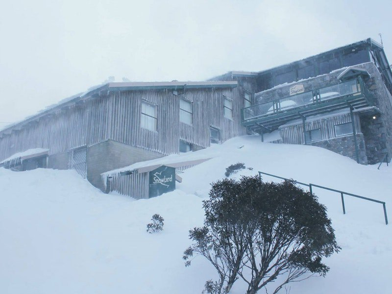 Snowbird Ski Lodge - Tourism TAS