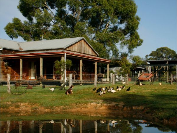 Tobruk Sydney Farm Stay - Tourism TAS