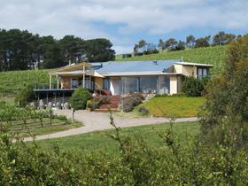 The Blue Grape Vineyard Accommodation - Tourism TAS