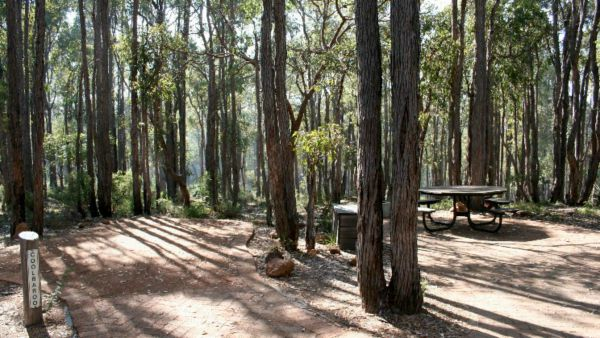 Perth Hills Centre Campground at Beelu National Park - Tourism TAS