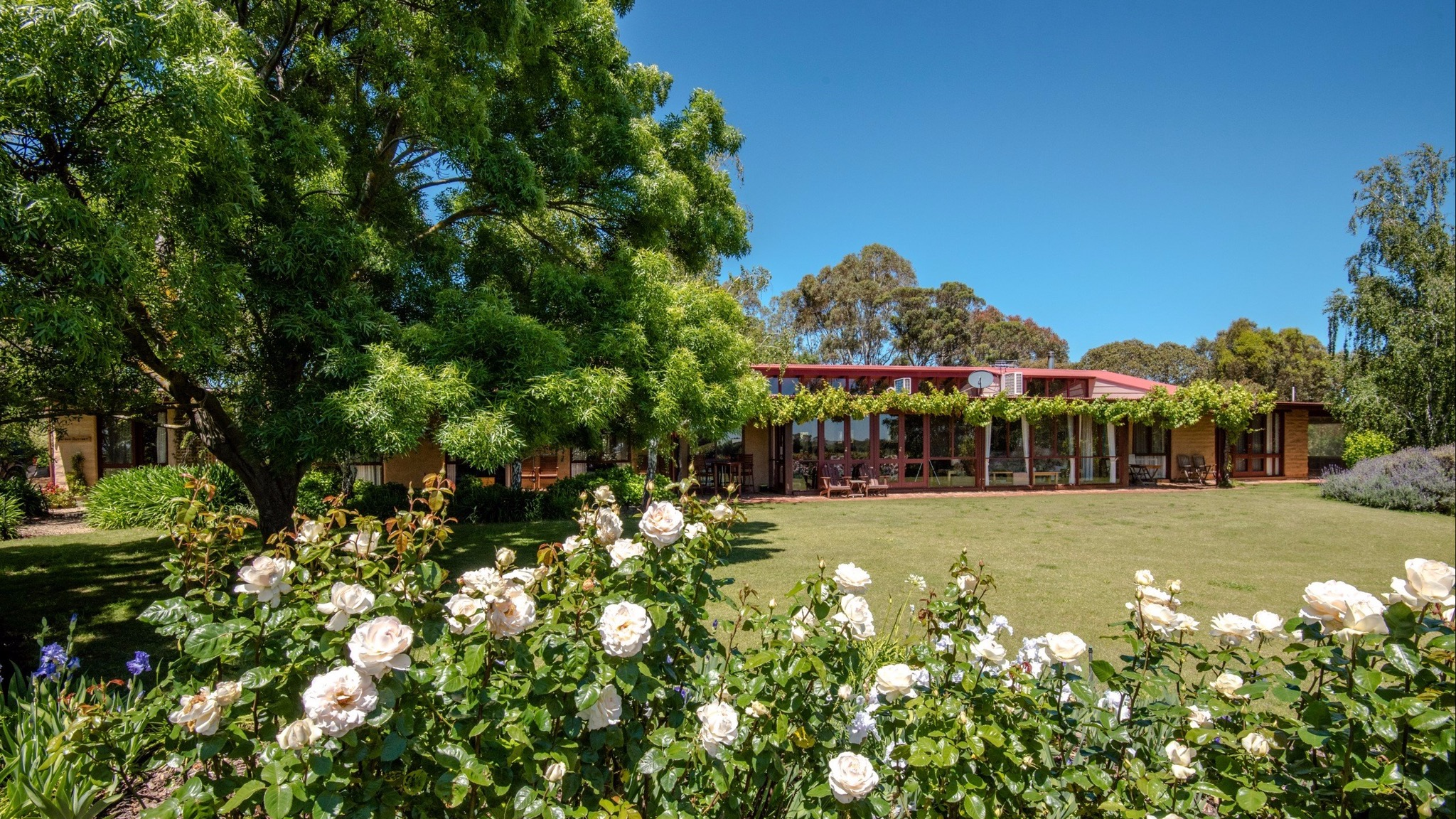 Mulberry Lodge Country Retreat - Tourism TAS