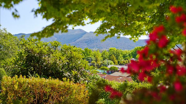 Greatview Holiday Spa Retreat for Couples - Tourism TAS
