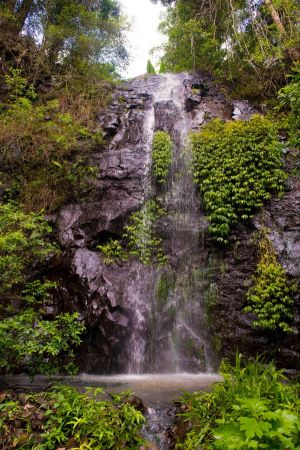Nimbin Waterfall Retreat - Tourism TAS