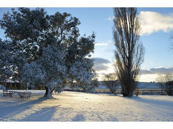 Snowy Mountains Resort and Function Centre - Tourism TAS