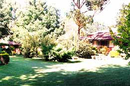 Boronia Holiday Lodge - Tourism TAS