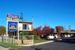 Orange Motor Lodge - Tourism TAS