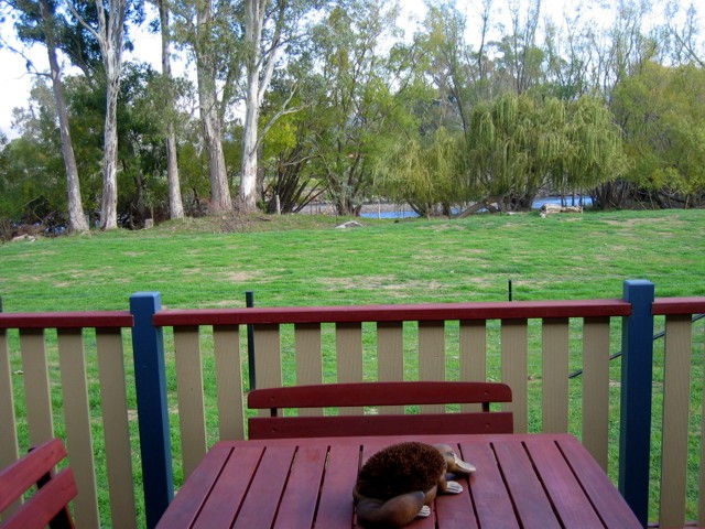 Ribbonwood Cottages - Tourism TAS