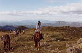 High Country Horses - Tourism TAS