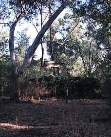 Ghost House Walk Trail Yanchep National Park - Tourism TAS