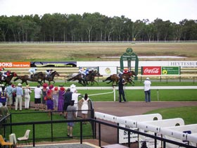 Pinjarra Race Club - Tourism TAS