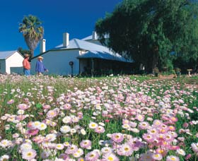 Greenough Museum - Tourism TAS