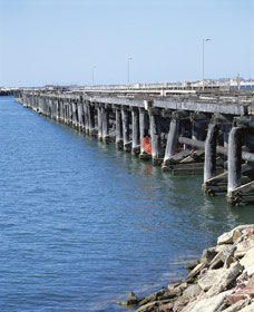 Old Timber Jetty - Tourism TAS