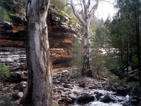 Mount Remarkable National Park - Tourism TAS