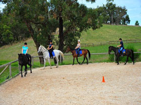 Megan Jones Riding School and Trail Rides - Tourism TAS