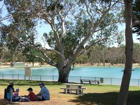 Naracoorte Nature Park and Swimming Lake - Tourism TAS