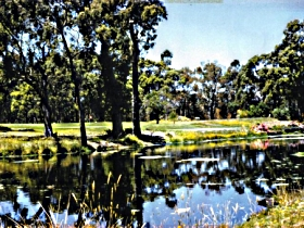 Smithton Country Club - Tourism TAS