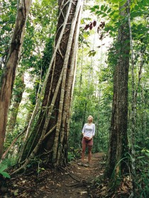 Wet Tropics - Tourism TAS