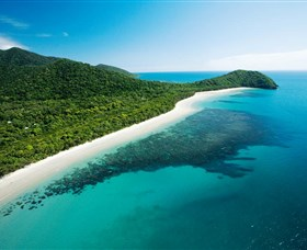 Cape Tribulation Daintree National Park - Tourism TAS