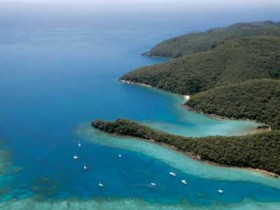 Butterfly Bay - Hook Island - Tourism TAS