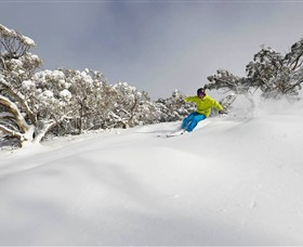 Mt Buller and Mt Stirling Alpine Resort - Tourism TAS