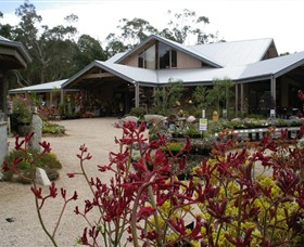 Kuranga Native Nursery and Paperbark Cafe - Tourism TAS