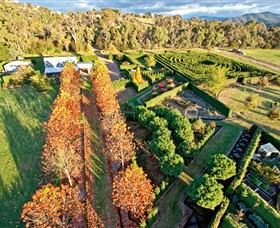 High Country Maze - Tourism TAS