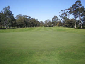 Maffra Golf Club - Tourism TAS