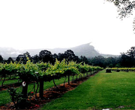 Cambewarra Estate Wines - Tourism TAS