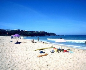 Culburra Surf Beach - Tourism TAS