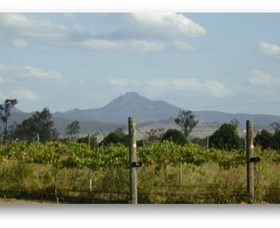 Ironbark Ridge Vineyard - Tourism TAS
