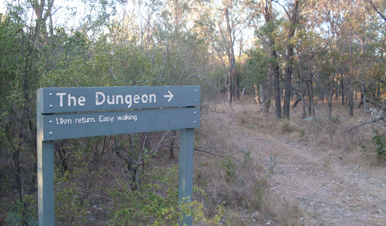 Dungeon lookout - Tourism TAS