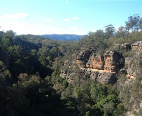 Ferntree Gully Reserve - Tourism TAS