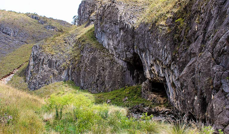 Nichols Gorge walking track - Tourism TAS