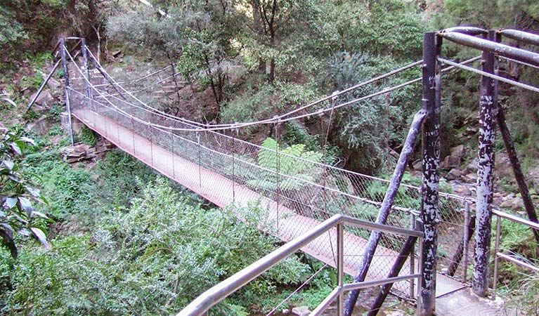 Jenolan River walking track - Tourism TAS