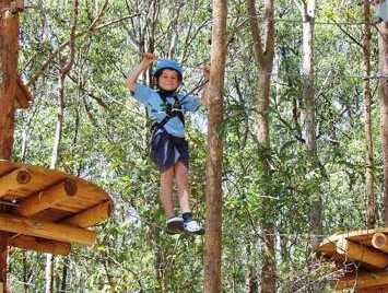 TreeTops Newcastle - Tourism TAS