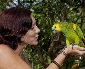 Birdworld Kuranda - Tourism TAS